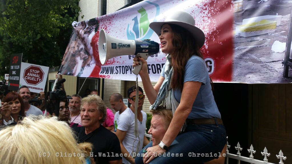 Lisa Vanderpump speaks to the crowd of protesters on the steps of the Chinese Embassy. Photo Credit: DemiGoddess Chronicle