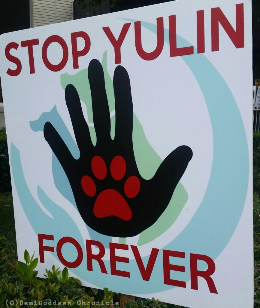 yulin_dog_march2