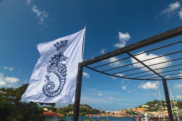 Photo courtesy of Discover Grenada via Twitter @discovergrenada