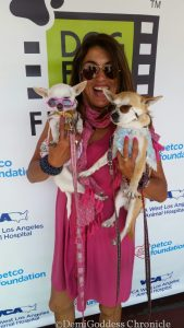 Beverly Hills Chihuahuas co-founder Carmen Diaz Medina. Photo credit DemiGoddessChronicle.com